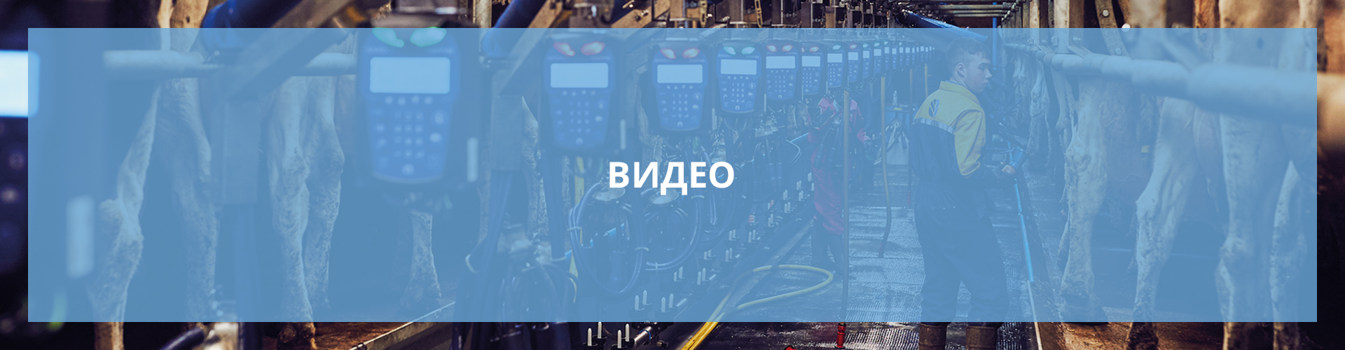 main video light blue banner Russian 1920x500px